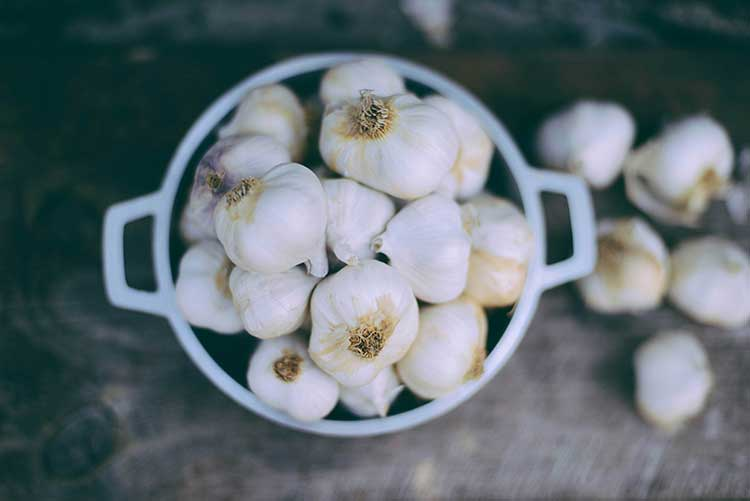 4 Benefits of Garlic and Honey
