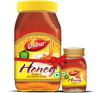 Buy Dabur Honey 500 grams